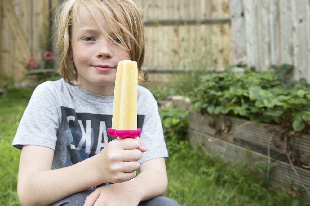 ice_lollies5